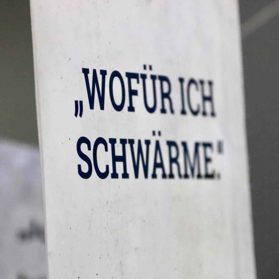 Schwarm 01